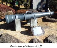 NRF- Cannon x02.JPG